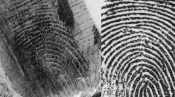Fingerprint comparison can be a subjective technique (www.clpex.com)