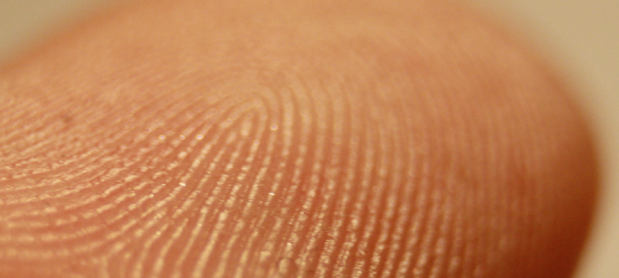 Fingerprint Drug Testing to Detect Drug Use or Contact