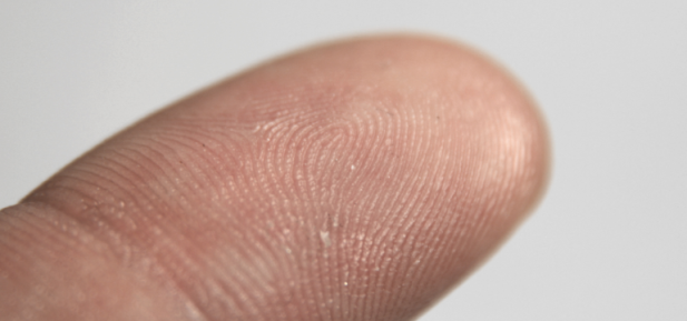 Sex Determination Through the Chemical Analysis of Fingerprints