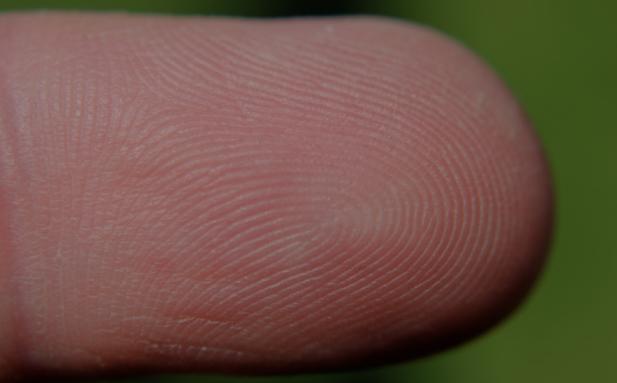 Developing Fingerprints on Metals to Aid Knife & Gun CrimeInvestigations